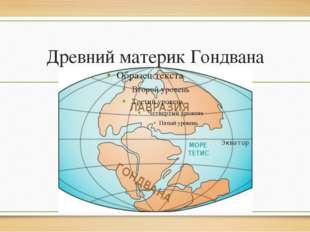 Древний материк Гондвана
