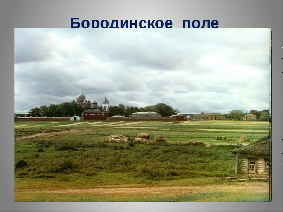 Бородинское поле