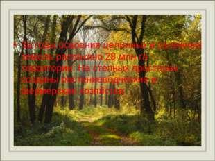 За годы освоения целинных и залежных земель распахано 28 млн га территории. Н