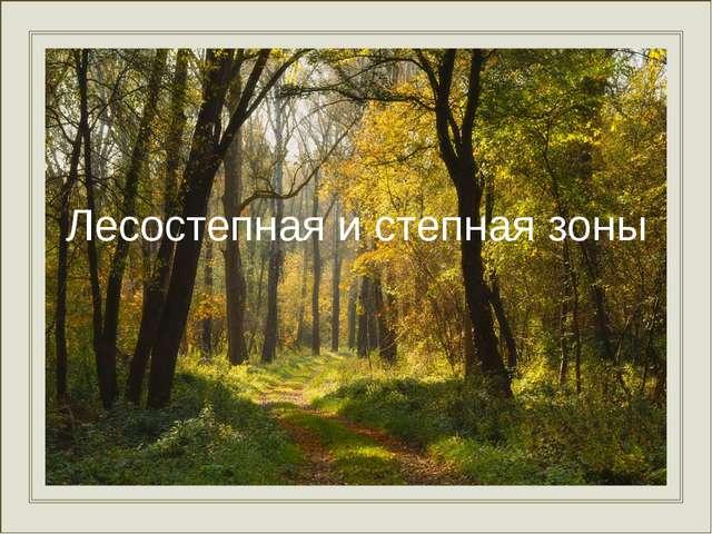 Лесостепная и степная зоны