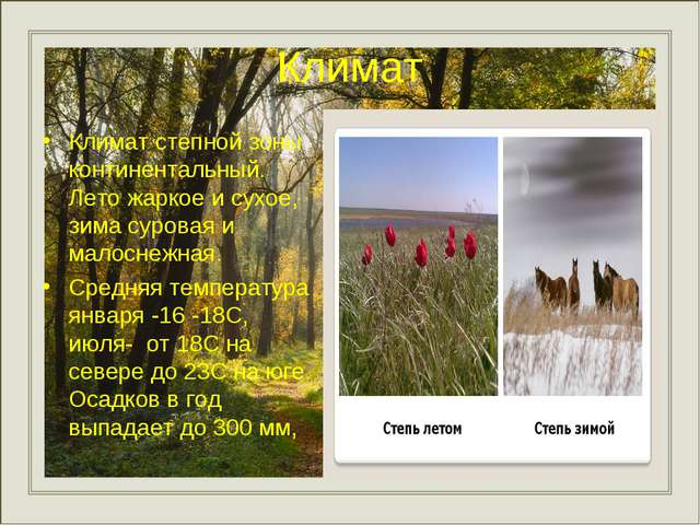 Климат Климат степной зоны континентальный. Лето жаркое и сухое, зима суровая...