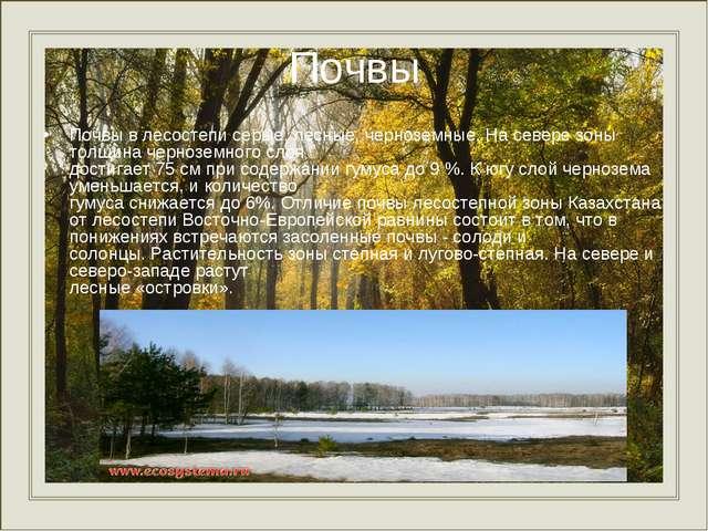 Почвы Почвы в лесостепи серые, лесные, черноземные. На севере зоны толщина че...