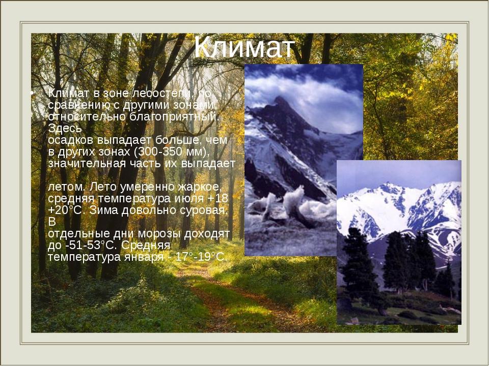 Климат Климат в зоне лесостепи, по сравнению с другими зонами, относительно б...