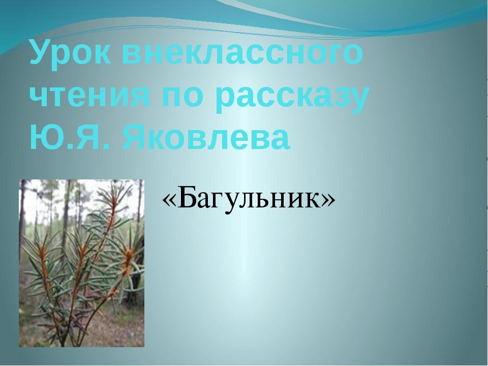 Урок внеклассного чтения по рассказу Ю.Я. Яковлева «Багульник»