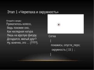 Этап 3, «Случайные цвета» Сетка { целые x, y; в_точку (x , y ); покажись; опу
