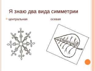 Я знаю два вида симметрии центральная осевая