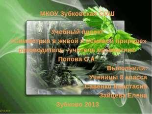 МКОУ Зубковская СОШ Учебный проект «Симметрия в живой и неживой природе» руко