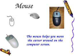 Mouse The mouse helps you move the cursor around on the computer screen.