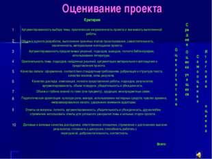 Оценивание проекта Критерии Аргументированность выбора темы, практическая нап