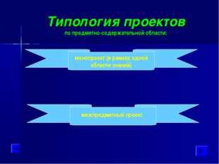 Типология проектов по предметно-содержательной области: монопроект (в рамках