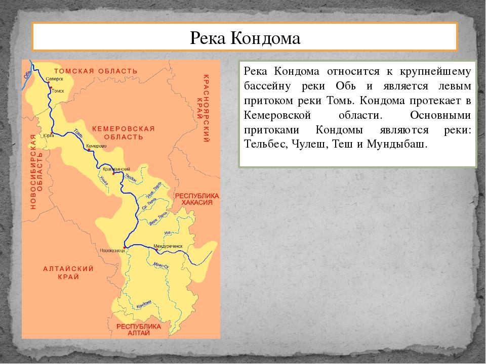 Река Кондома Река Кондома относится к крупнейшему бассейну реки Обь и являетс...