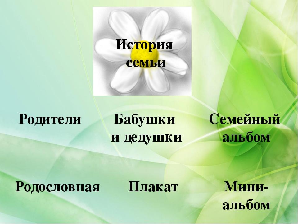История семьи Родители Бабушки и дедушки Семейный альбом Мини- альбом Плакат...
