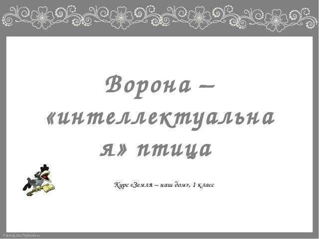 Ворона – «интеллектуальная» птица Курс «Земля – наш дом», 1 класс FokinaLida....