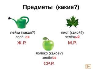Предметы (какие?) лейка (какая?) зелёная лист (какой?) зелёный яблоко (какое?