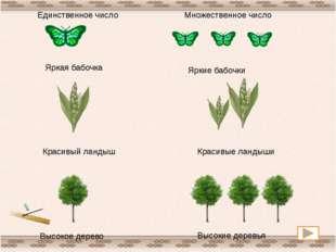 Яркая бабочка Яркие бабочки Красивый ландыш Красивые ландыши Высокое дерево