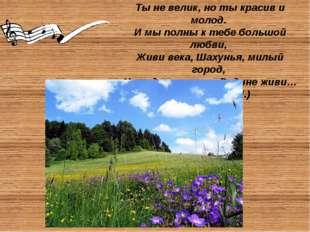 Шахунский район граничит с Ветлужским, Тоншаевским, Тонкинским, Уренским рай