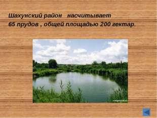 А знаете ли вы… Шахунский район один из старейших в Нижегородской области обр