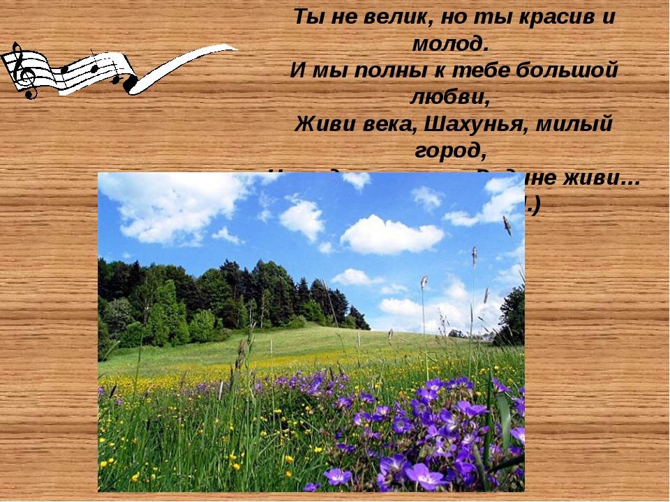 Шахунский район граничит с Ветлужским, Тоншаевским, Тонкинским, Уренским рай...