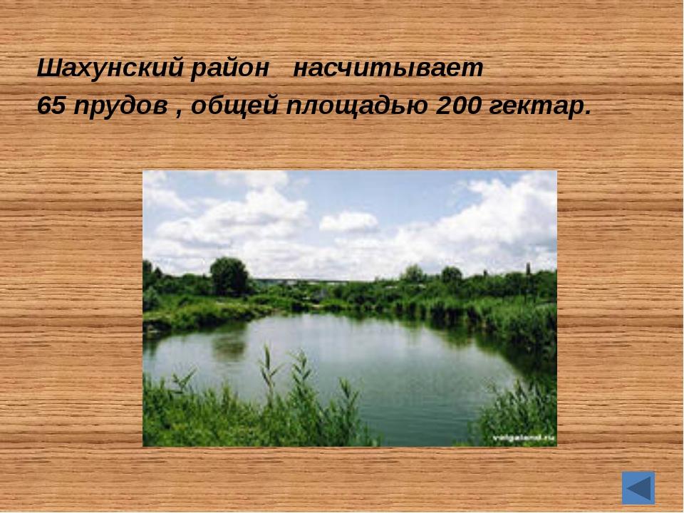 А знаете ли вы… Шахунский район один из старейших в Нижегородской области обр...