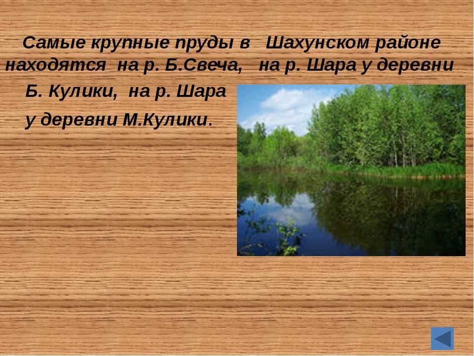 А знаете ли вы… Каковы площади трех наиболее крупных прудов Шахунского район...