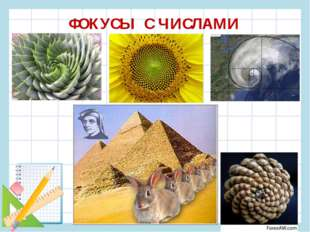 ФОКУСЫ С ЧИСЛАМИ