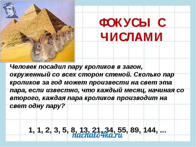 ФОКУСЫ С ЧИСЛАМИ Человек посадил пару кроликов в загон, окруженный со всех ст...