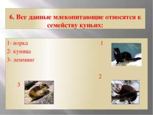 6. Все данные млекопитающие относятся к семейству куньих: 1- норка 1 2- куниц