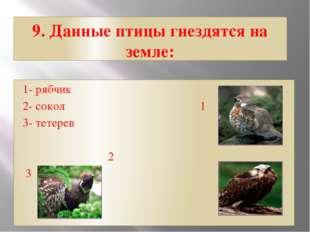 9. Данные птицы гнездятся на земле: 1- рябчик 2- сокол 1 3- тетерев