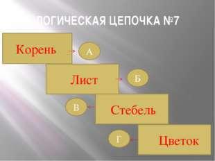 ЛОГИЧЕСКАЯ ЦЕПОЧКА №7 Корень Стебель Лист Цветок Б Г В А