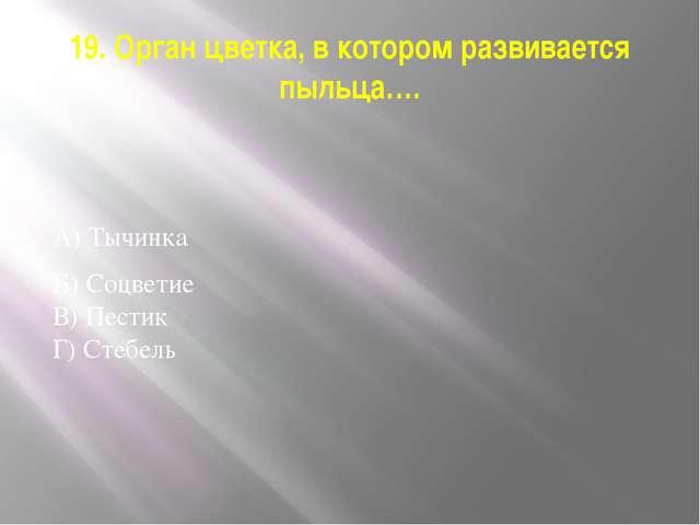 19. Орган цветка, в котором развивается пыльца…. А) Тычинка Б) Соцветие В) Пе...