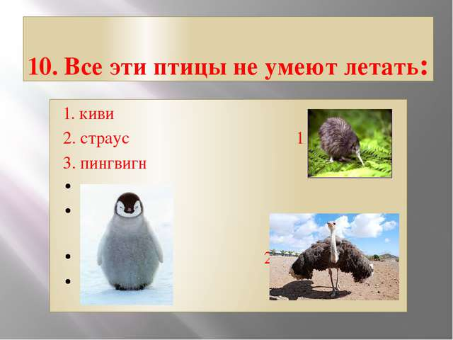 10. Все эти птицы не умеют летать: 1. киви 2. страус 1 3. пингвигн 2 3