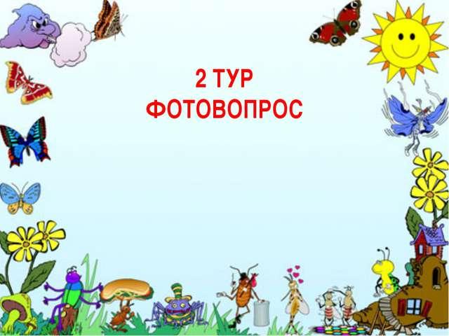 2 ТУР ФОТОВОПРОС