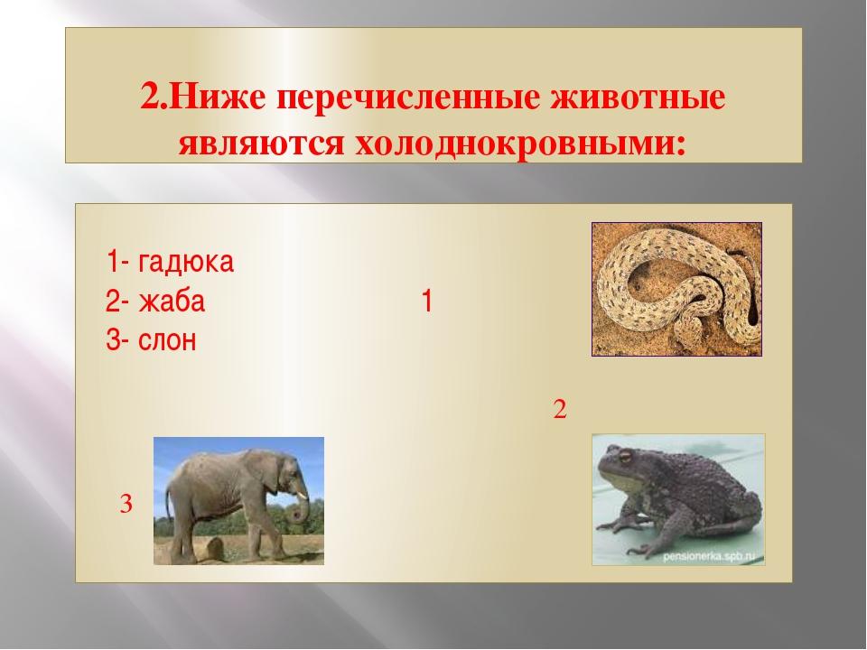 2.Ниже перечисленные животные являются холоднокровными: 1- гадюка 2- жаба 1 3...