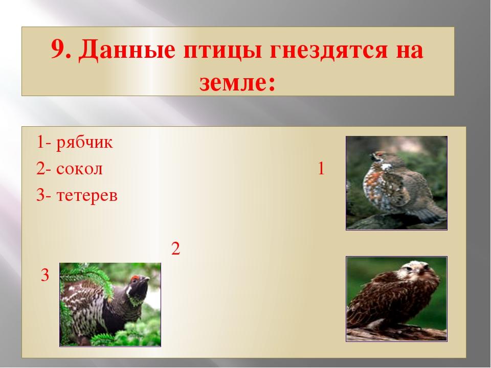 9. Данные птицы гнездятся на земле: 1- рябчик 2- сокол 1 3- тетерев...