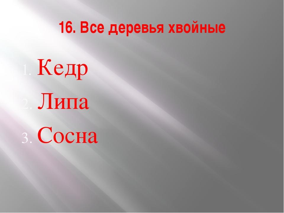 16. Все деревья хвойные Кедр Липа Сосна