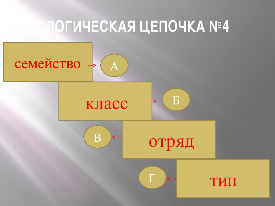 ЛОГИЧЕСКАЯ ЦЕПОЧКА №4 класс отряд тип Б Г В А