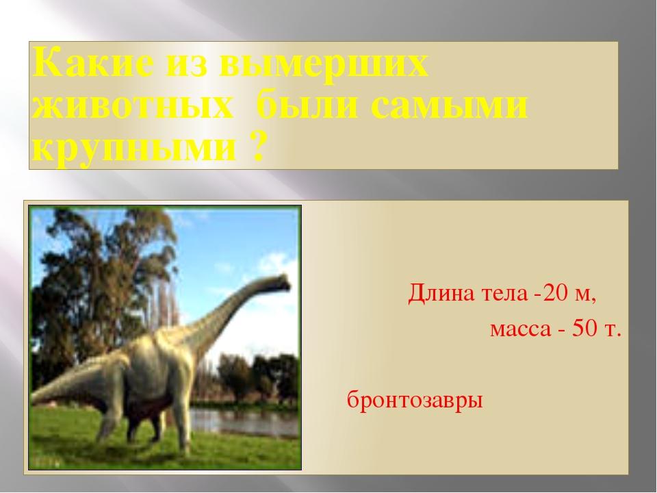 Какие из вымерших животных были самыми крупными ? Длина тела -20 м, масса - 5...