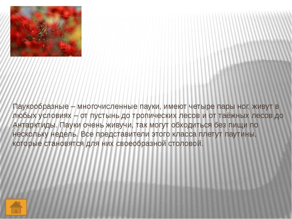 Литература 1. Н.Ф. Виноградова Окружающий мир 2 класс. Часть 2. Вентана – Гра...