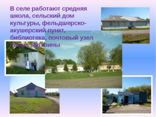 В селе работают средняя школа, сельский дом культуры, фельдшерско-акушерский