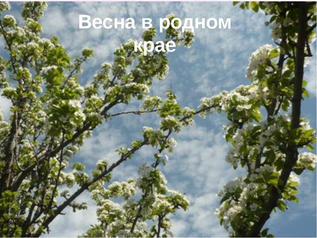 Весна в родном крае