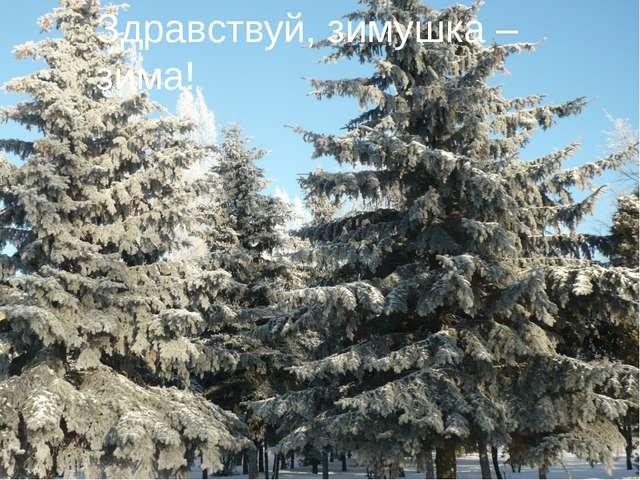 Здравствуй, зимушка – зима!