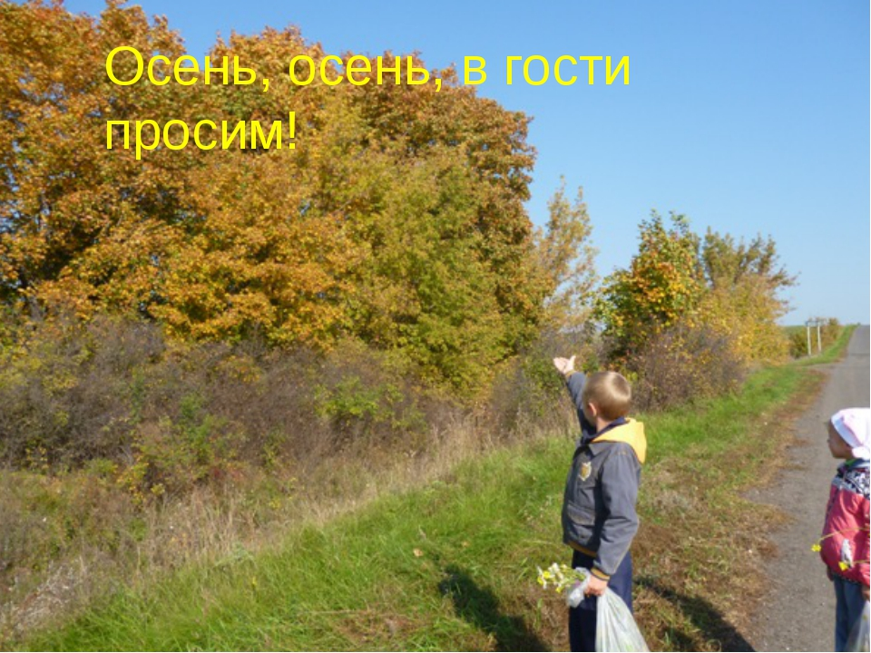 Осень, осень, в гости просим!