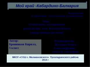 Руководитель: Жуленко Ольга Александровна, учитель географии Направление «Гум