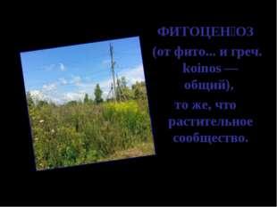 ФИТОЦЕ͘ОЗ (от фито... и греч. koinos — общий), то же, что растительное сооб