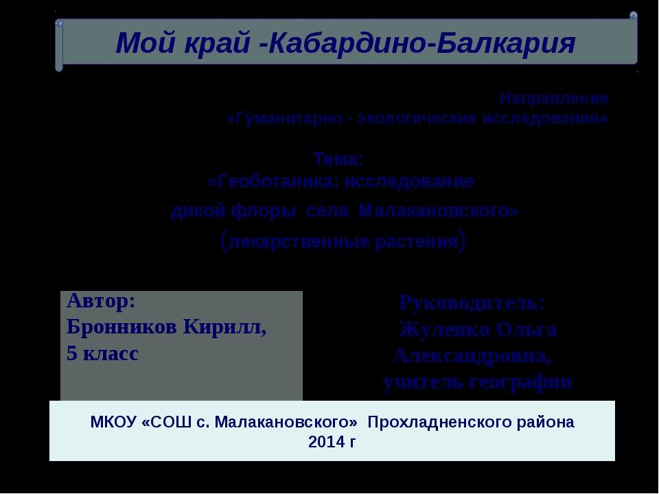 Руководитель: Жуленко Ольга Александровна, учитель географии Направление «Гум...