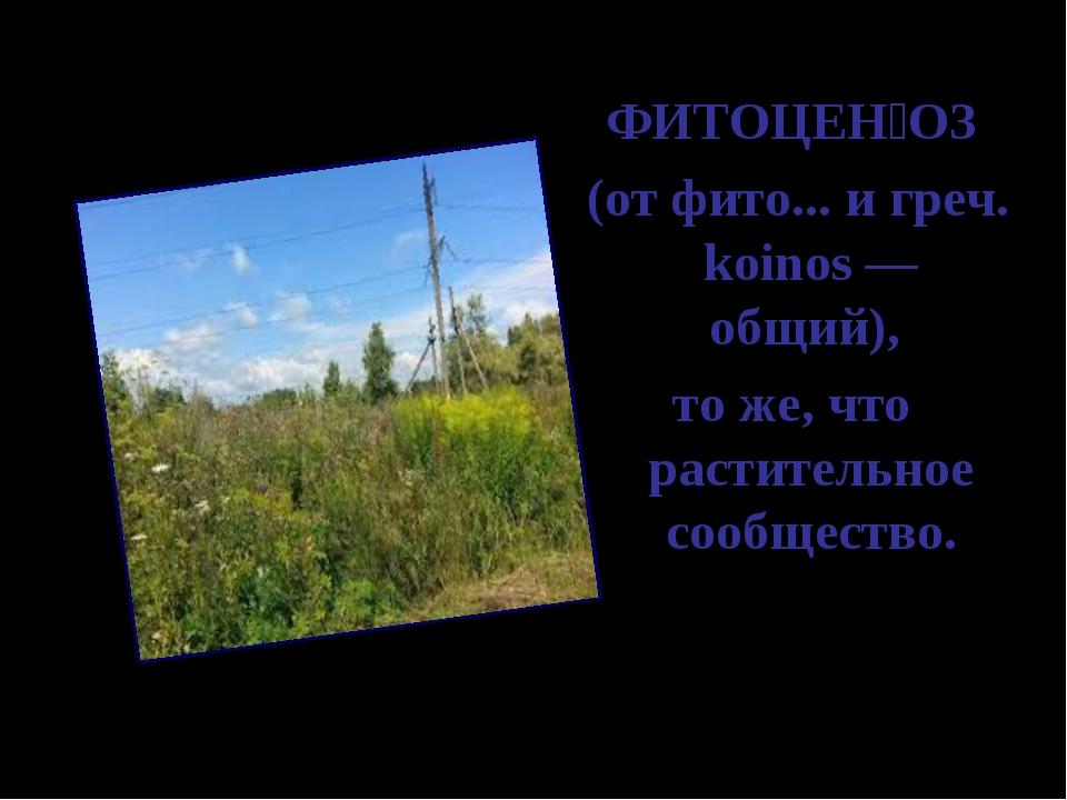 ФИТОЦЕ͘ОЗ (от фито... и греч. koinos — общий), то же, что растительное сооб...