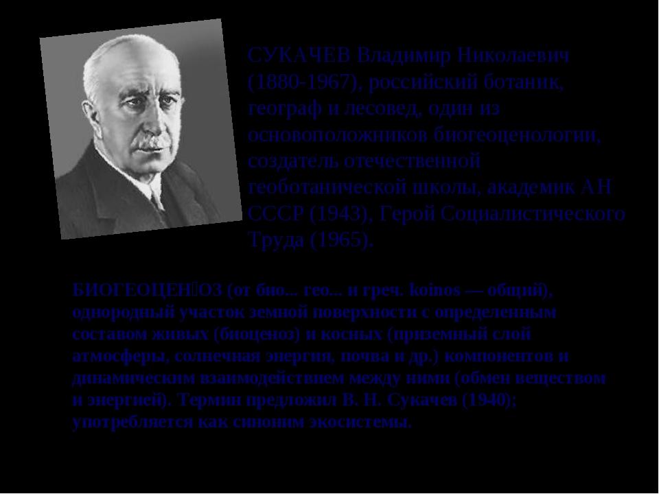 СУКАЧЕВ Владимир Николаевич (1880-1967), российский ботаник, географ и лесове...