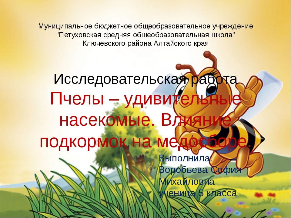 """Муниципальное бюджетное общеобразовательное учреждение """"Петуховская средняя..."""