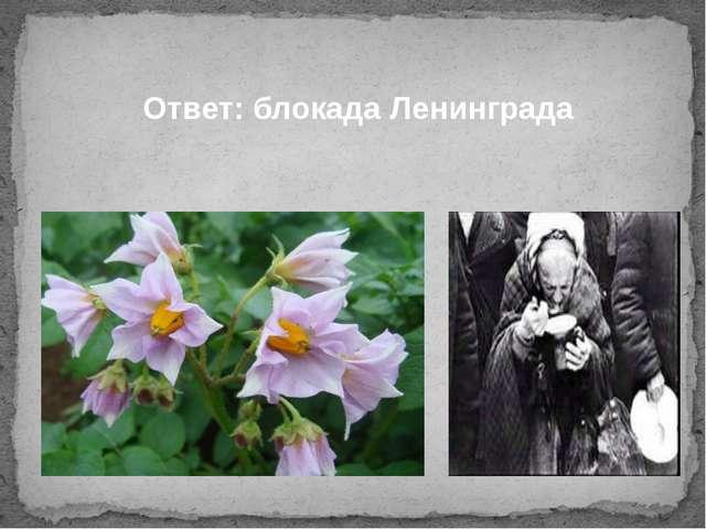 Ответ: блокада Ленинграда