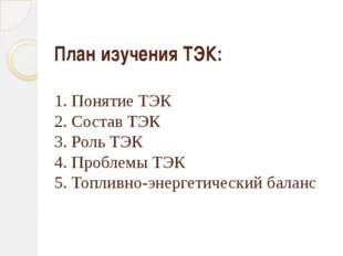 План изучения ТЭК: 1. Понятие ТЭК 2. Состав ТЭК 3. Роль ТЭК 4. Проблемы ТЭК 5